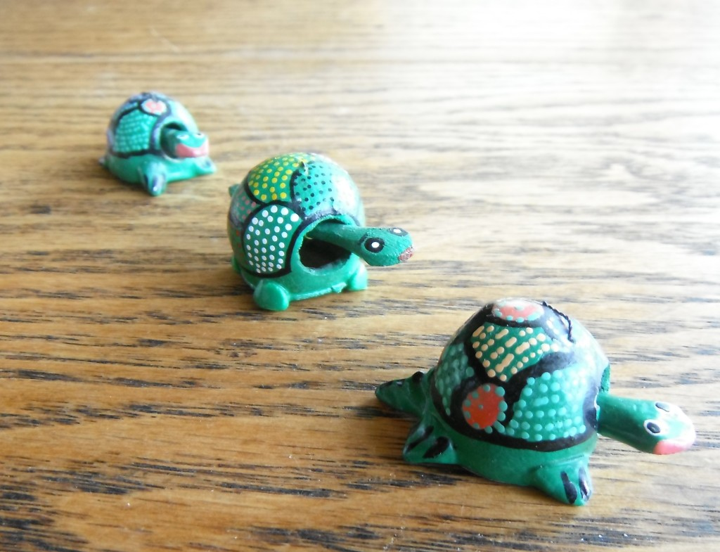 little turtles all in a row